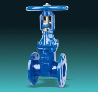 BS Cast Iron Gate Valve
