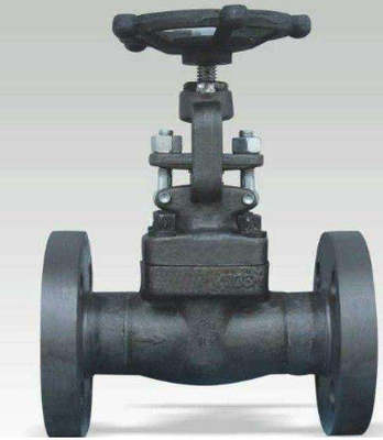 Forged Steel Flanged Globe Valve